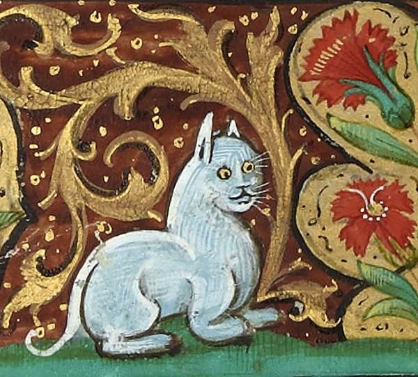 Imgenes De Pinturas Graciosas La Edad Media Gatos