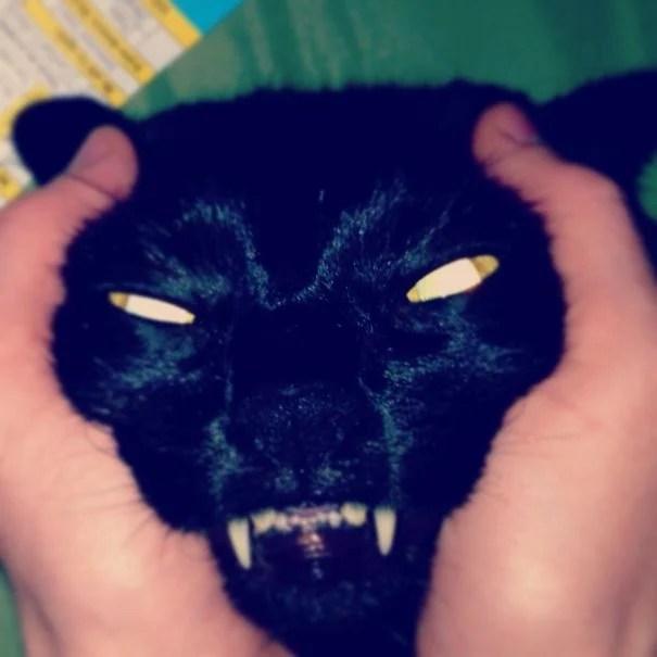 gato poseído enojado