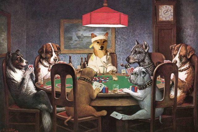 shiba inu perro cartas