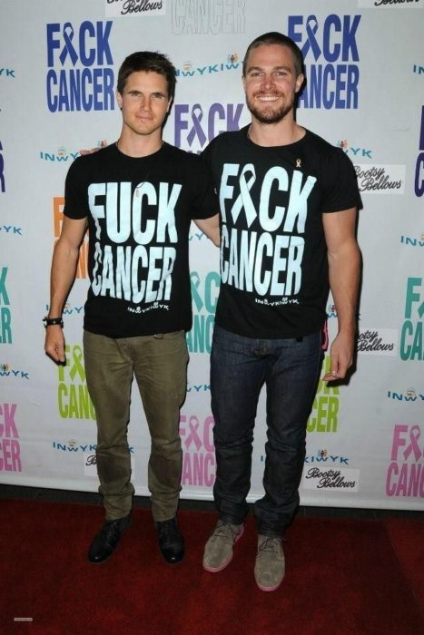 Stephen Amell y Robbie Amell