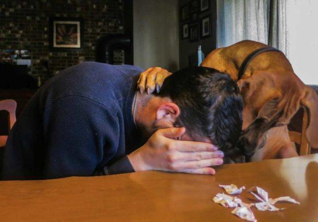 perro y humano no ganó la lotería