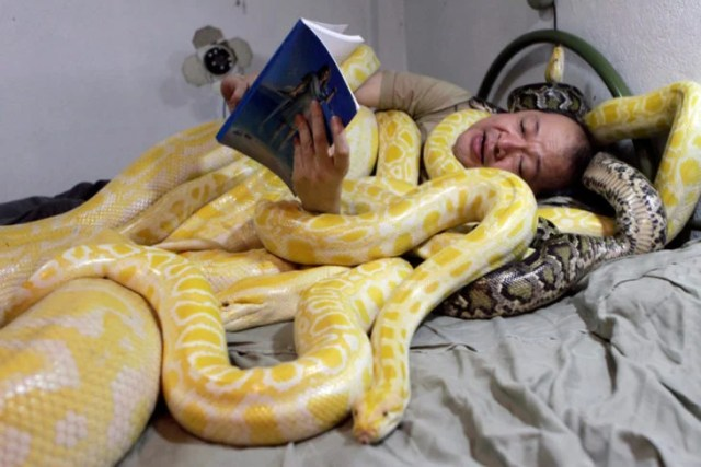 hombre recostado con serpientes leyendo un libro