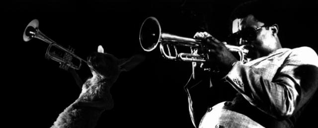 Batalla Photoshop canguro - concierto de jazz