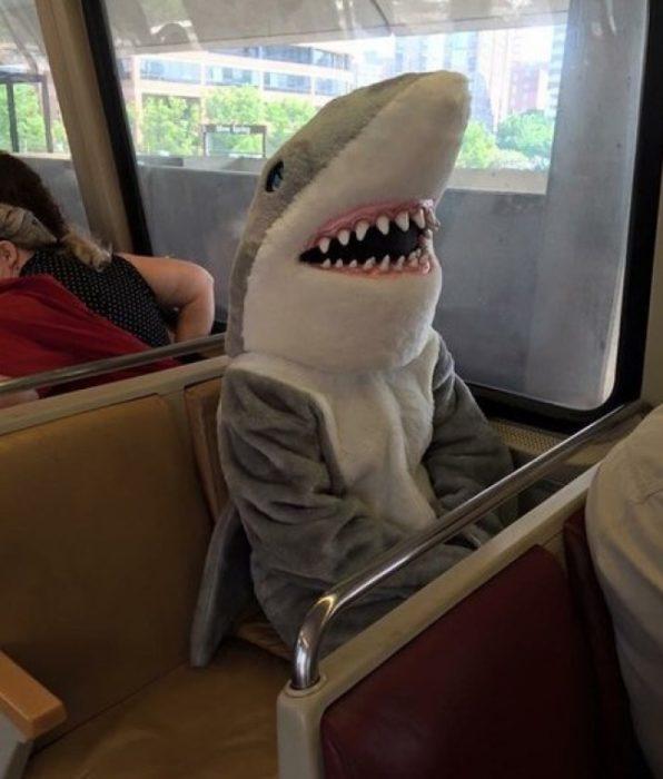 Tiburón en el transporte público