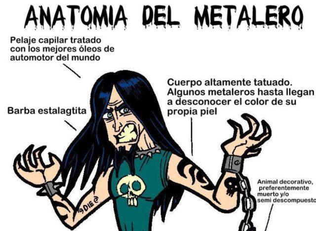 metalero anatomía
