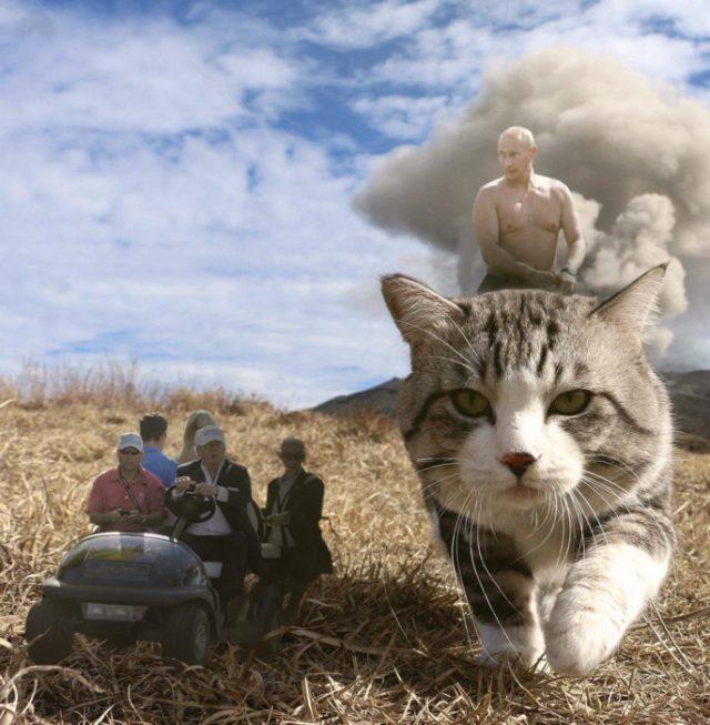 putin kim y trump editados en una cuatrimoto a un lado de un gatito gigante
