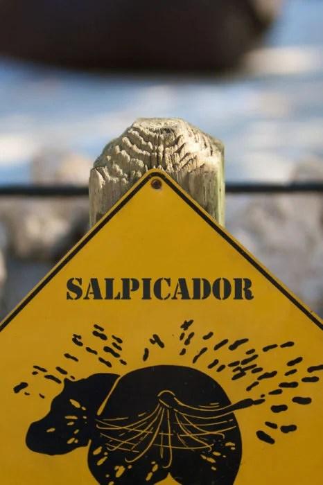 letrero zoológico salpica