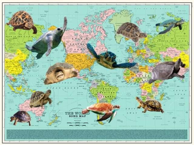 mapa tortugas