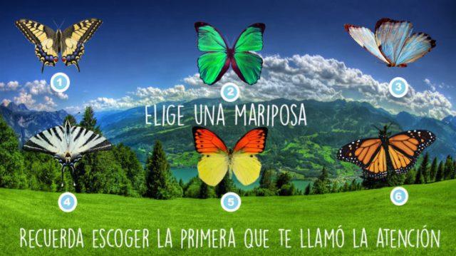 test de las seis mariposas