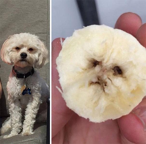 Están idénticos