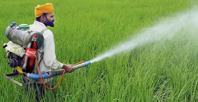 pesticida en los cultivos