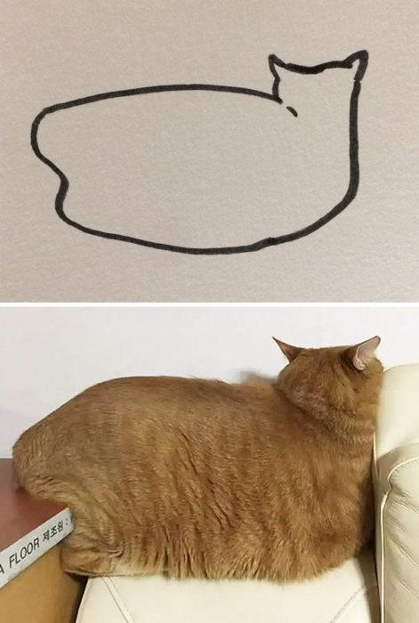Dibujos realistas gatito - de espaldas