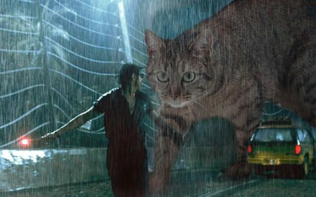 gato jurassic park