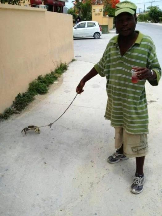 hombre paseando a cangrejo