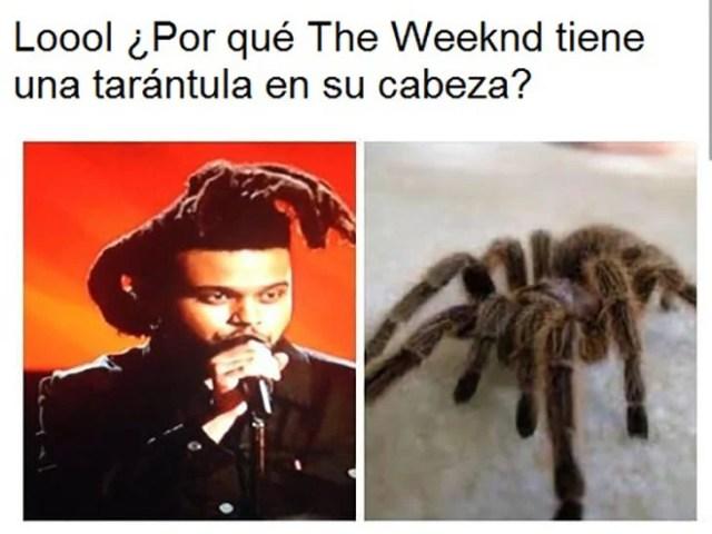 peinado de the weeknd con la constituye de una tarantula
