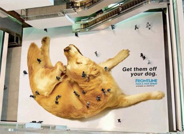 anti pulgas publicidad ingeniosa y creativa