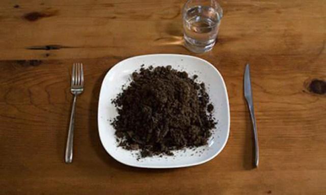 Comer tierra antojos de encinta