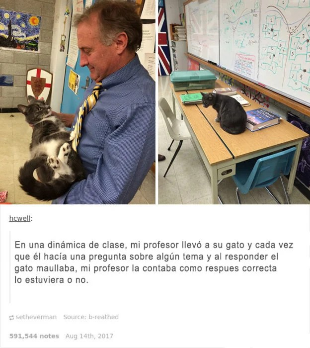 quiero un maestro asi