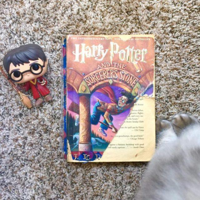 Libro Harry Potter portada rota