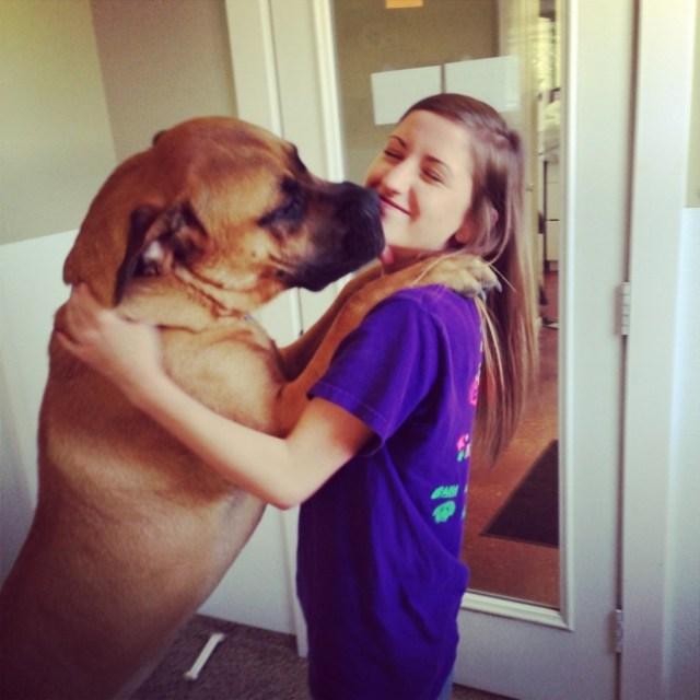 Cuidadora de un refugio de perros