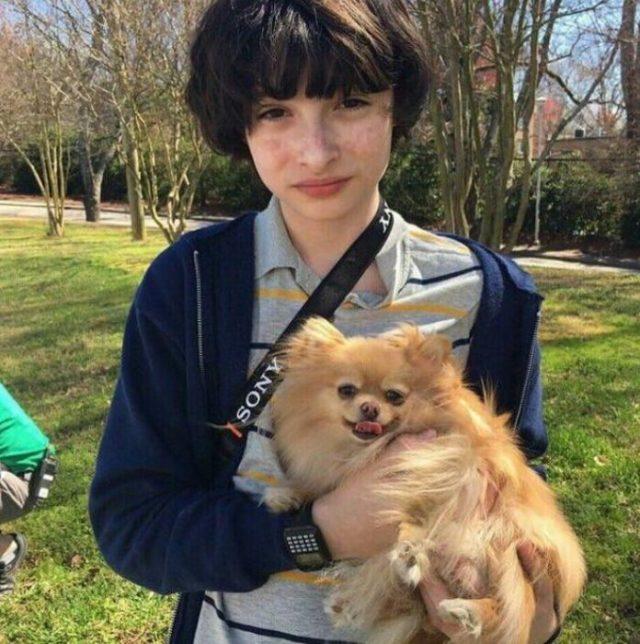 finn y el perrito