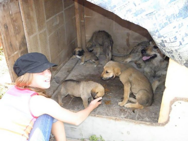 perritos y niña