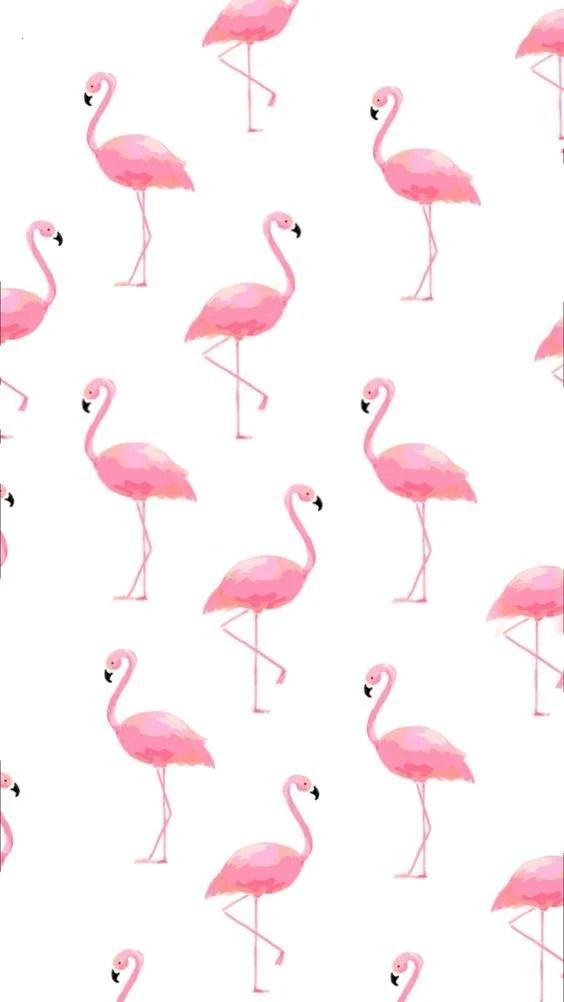 Pinterest Wallpaper Iphone Cute 20 Fondos De Pantalla Bonitos Para Chicas Tiernas