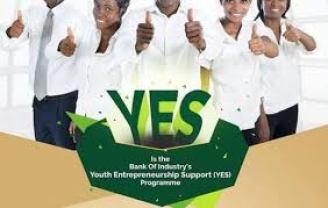 P-yes Registration 2020/2021 Form - Apply Here Pyes Portal