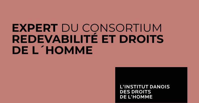 Danish Institute for Human Rights  / recrute [annonce n°2]