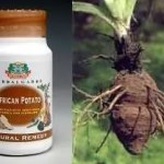 Essential Benefit of Africa Potato Capsule