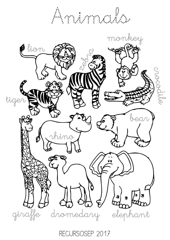 Animals2 001