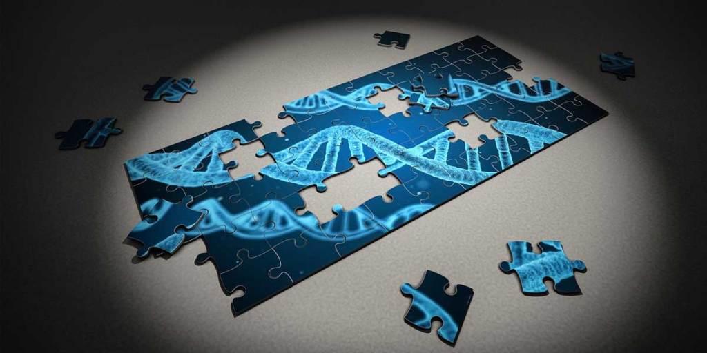 15 Problemas de Genética de 4º ESO para resolver