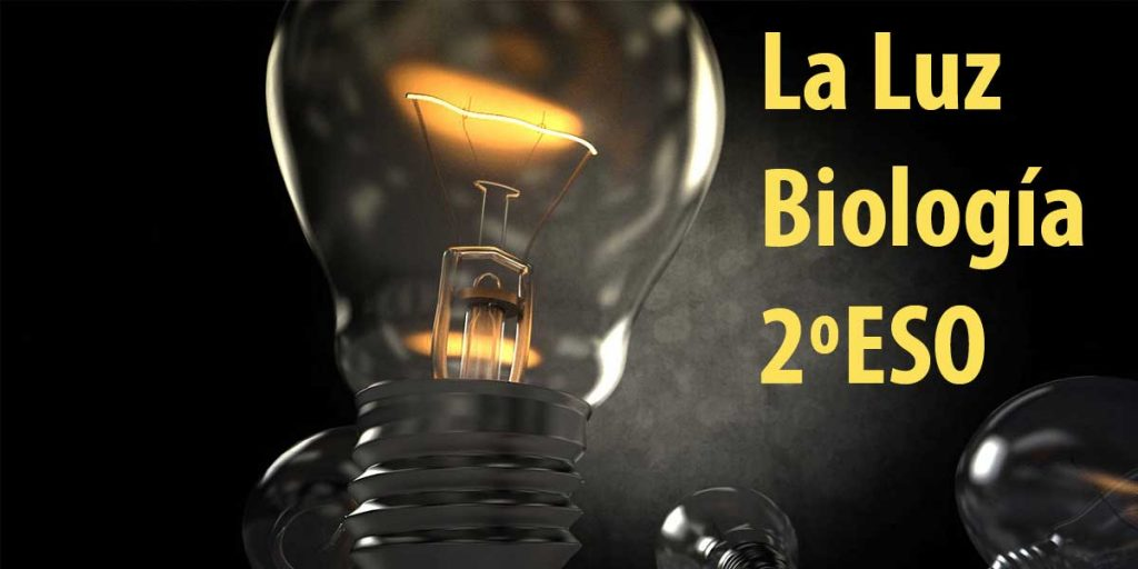 Ejercicios y solucionario del temario de la Luz- Biología 2º ESO