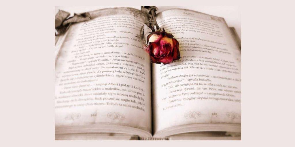 El Verso, La estrofa y el Poema 2º ESO ficha de estudio