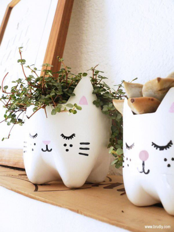 DIY : Kitty planters from plastic bottles in plastics diy  with Plastic bottles