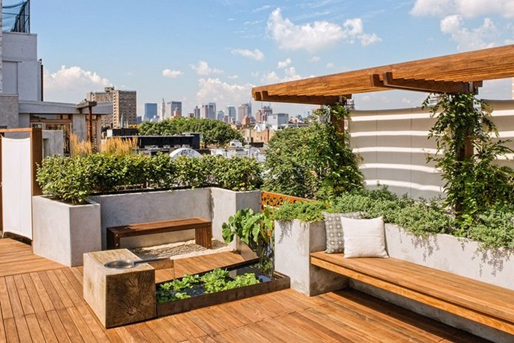Balcony And Rooftop Garden Ideas Recycled Things