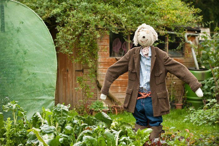 A dressed scarecrow