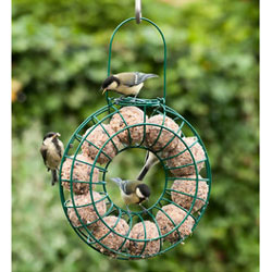 10 Fat Ball Feeding Ring