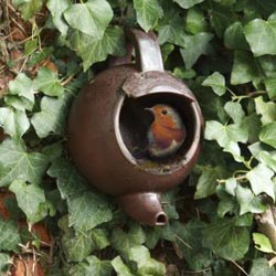Wildlife World Open Fronted Teapot Bird Nester and Nest Box