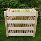 Wooden Fruit and Vegetable Larder, Rack and Store