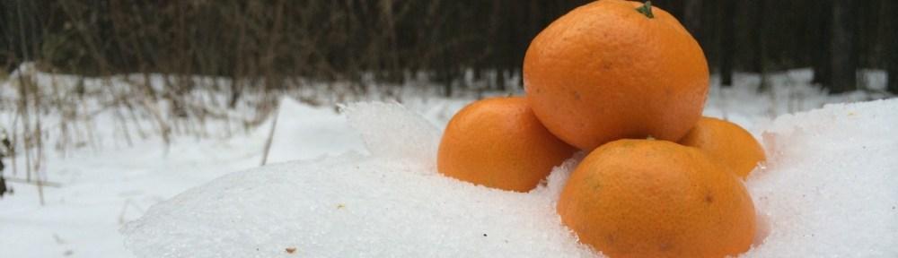 orange snow