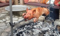 Hog Roast & Barbecue Catering Company in France  Red Radish