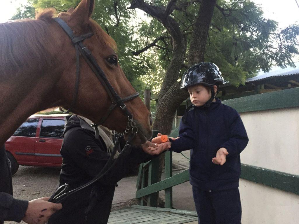 Al final de cada clase, le da una pequeña recompensa a su caballo.