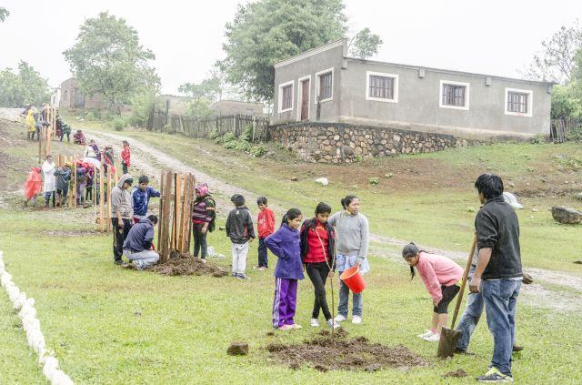 En Río Blanquito, Salta, plantaron árboles nativos. Crédto: Almudena Van der Ghote.