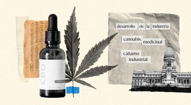 Un frasco de aceite de cannabis junto a la planta. Y el Congreso de la Nación al lado, simbolizando el proyecto del Gobierno.