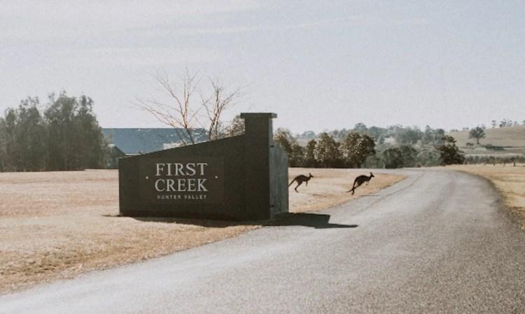 Kangaroos outside First Creek winery