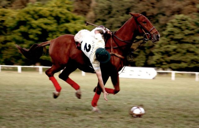 Pato is a national sport of Argentina which is played on horseback.