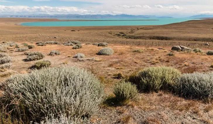 patagonian-desert