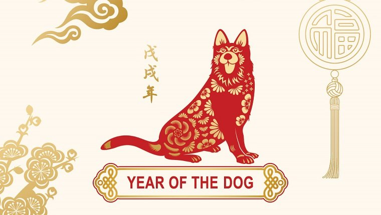 Chinese Zodiac Dog Compatibility - Who Fits Dog Relationship - Love