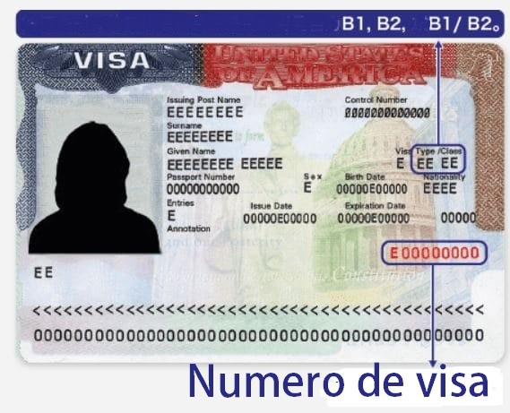 Cuál es mi número de visa